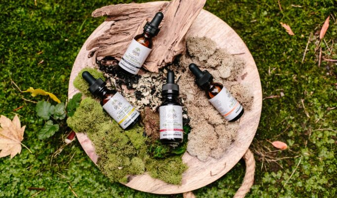 medicine-bottles-on-green-and-brown-moss-3259600